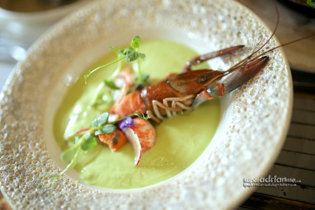 Chilled Avocado and Ginger Soup with Poached Yabbies (S$20)